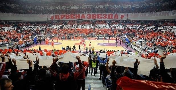 crvena-zvezda-fans