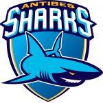 Antibes: Les anciens sont pessimistes quant au maintien des Sharks en Jeep Elite