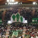 Limoges: Les Ultras Green veulent réaliser un immense tifo pour le clasico
